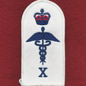 Health Services Insignia (X)