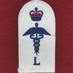 Health Services Insignia  (L)