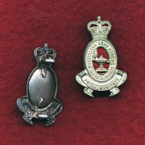 Collar Badge - RAANC  53/60