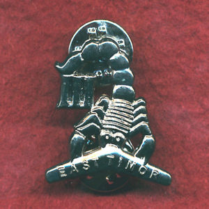 3/4 Cav Regt Lapel pin  (East Timor)