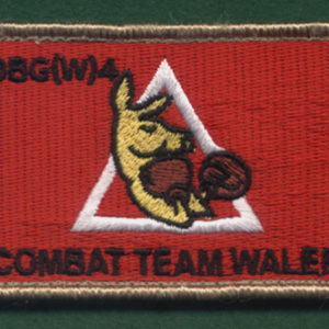 IRAQ - OBG(W)-4  CT WALER  (2nd Variation)