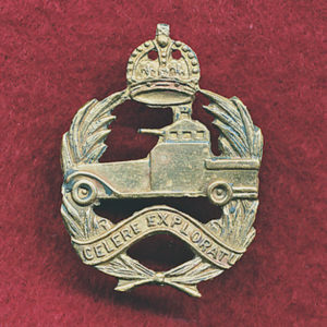 1 ACR Collar Badge (w/L)