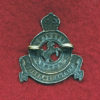 21 Light Horse Regiment Collar Badge (w/L)