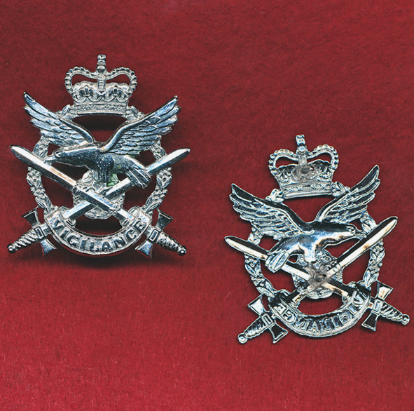 Hat Badge - AAAvn Corps  (x1)