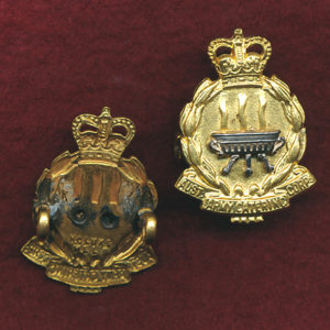 Collar Badge - AACC  53/60  (Luke)
