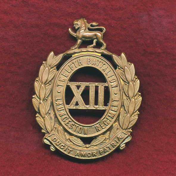 12 INF BN Hat Badge (30/42)