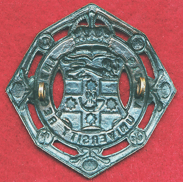 SUR - Collar Badge (ca60s)