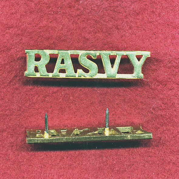 RA SVY Shoulder title  (A/A)