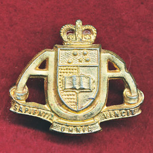 AUR - Collar Badge (53/60)