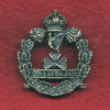 NSW IRISH RIFLES Hat Badge  (Oxy)  (1900-12)