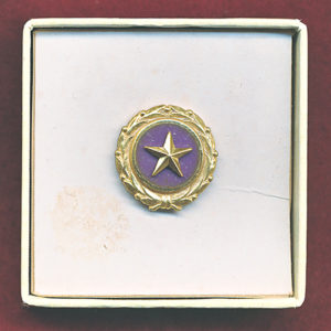 US  - Gold Star Lapel Button