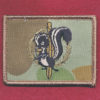 SF - SOLS - RFC Patch  (RAEME)  (#2)