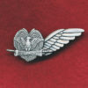 PNGDF -  Aviation wing
