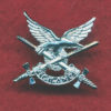 Collar Badge - AAAvn Corps   (w/R) (Post 97)