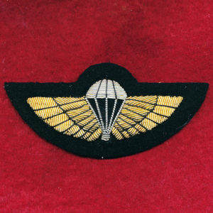 Parachute Badge - SAS  (#4)