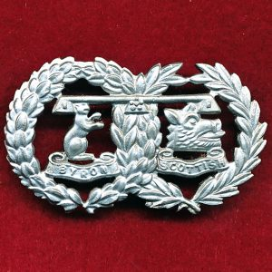 41 INF BN (Byron Scottish Regt) w/R collar badge (48/53)