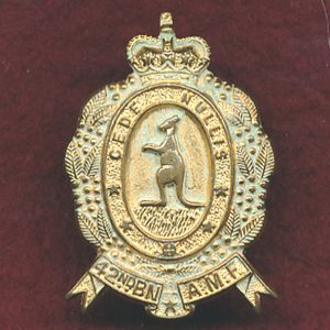 42nd INF BN Collar Badge (w/L) (Capricornia Regt)