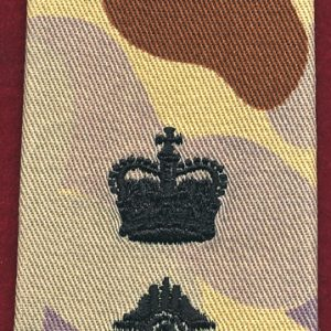 Lieutenant Colonel Rank Slide - DPDU