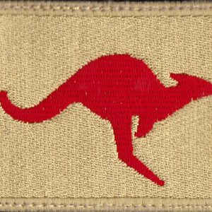 IRAQ -  Force Extraction Team Protype Patch