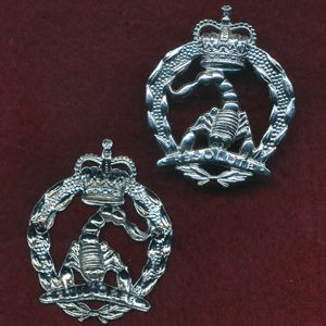 3  Cavalry Regiment (A SQN) - Hat Badge