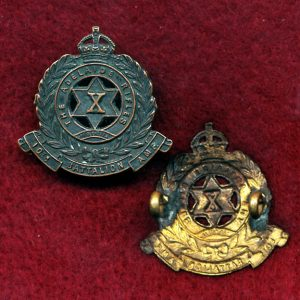 10 INF BN Collar Badge (30/42)