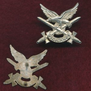 Collar Badge - AAAvn Corps  (w/L)  (w/m)