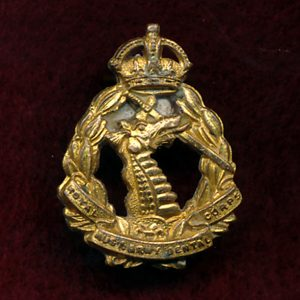Collar Badge - RAADC  (w/R)  (48/53)
