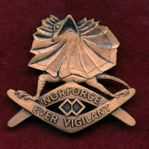 NORFORCE Hat Badge