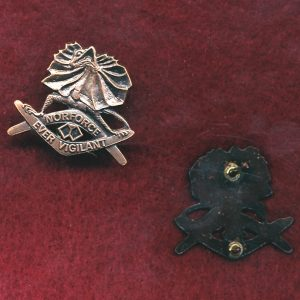 NORFORCE Collar Badge  (w/L)