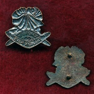 NORFORCE Collar Badge  (w/R)