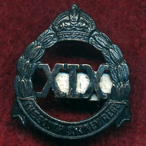 19 INF BN - Collar Badge (Oxy) (South Sydney Regt.)