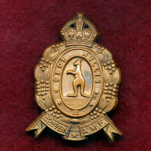 42 INF BN Hat Badge (Central Queensland Regt.) (48/53)