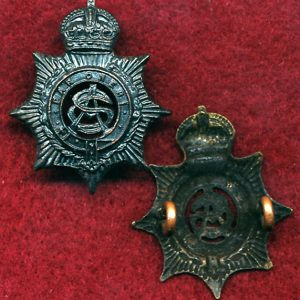 Collar Badge - AASC  (Oxy) (30/42)