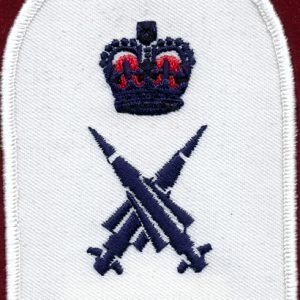 Navy Rating Patch  869-0182