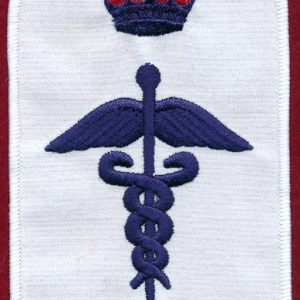 Health Services Insignia (U)