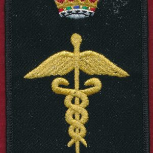 Health Services Insignia (X) (X-Ray Tech)