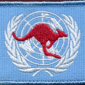 United Nations Patch (4)