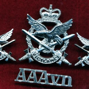Hat and Collar Badge set - AAAvn Corp