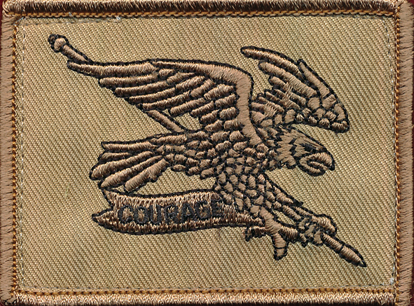 2 Cav Regt - Field Patch