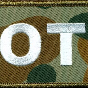 Observer Training patch  (DPCU)
