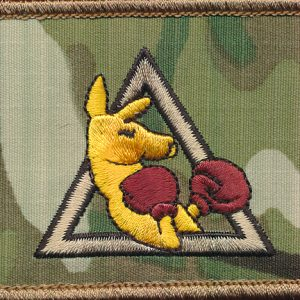 Afghanistan - A Sqn 2/14 LHR Patch