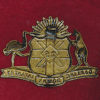 25 INF BN Hat Badge (Darling Downs Regt.) (30/42)